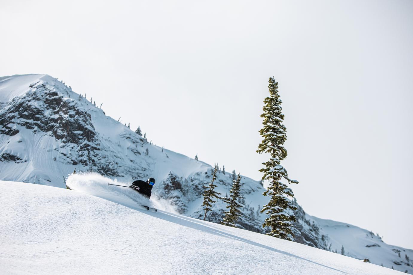 Skiing Fernie Alpine Resort